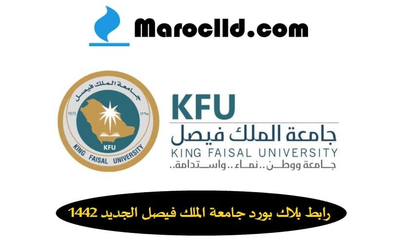رابط بلاك بورد جامعة الملك فيصل الجديد 1442